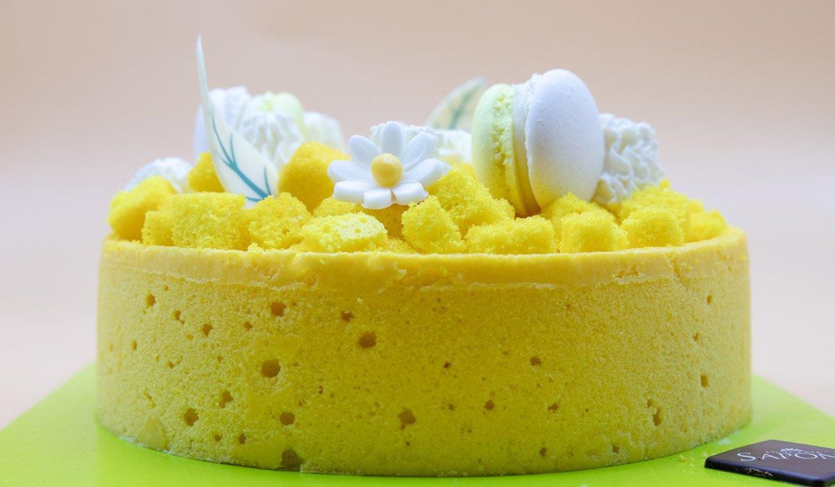 Dolceria Sapone - Festa della Donna - Mimosa